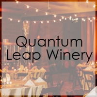 Quantum-Leap-Winery-Lighting-Gallery-Our-DJ-Rock (1)
