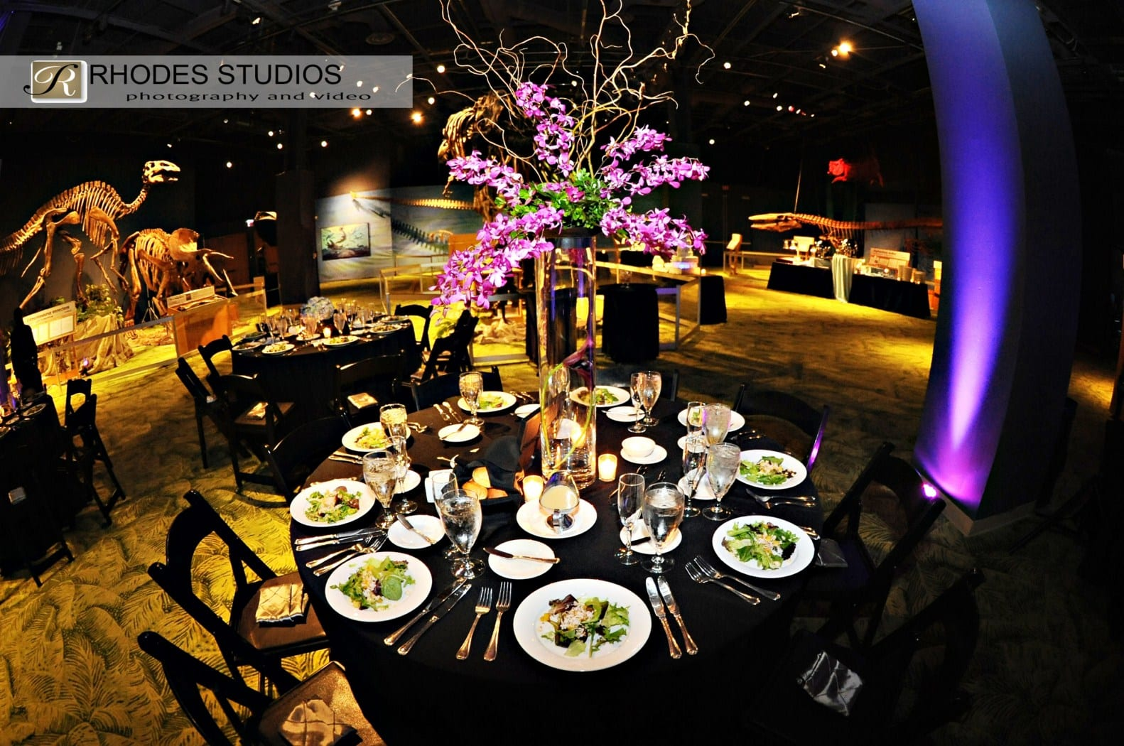 Orlando Wedding Dj Our Rocks Science Center Rhodes Studios