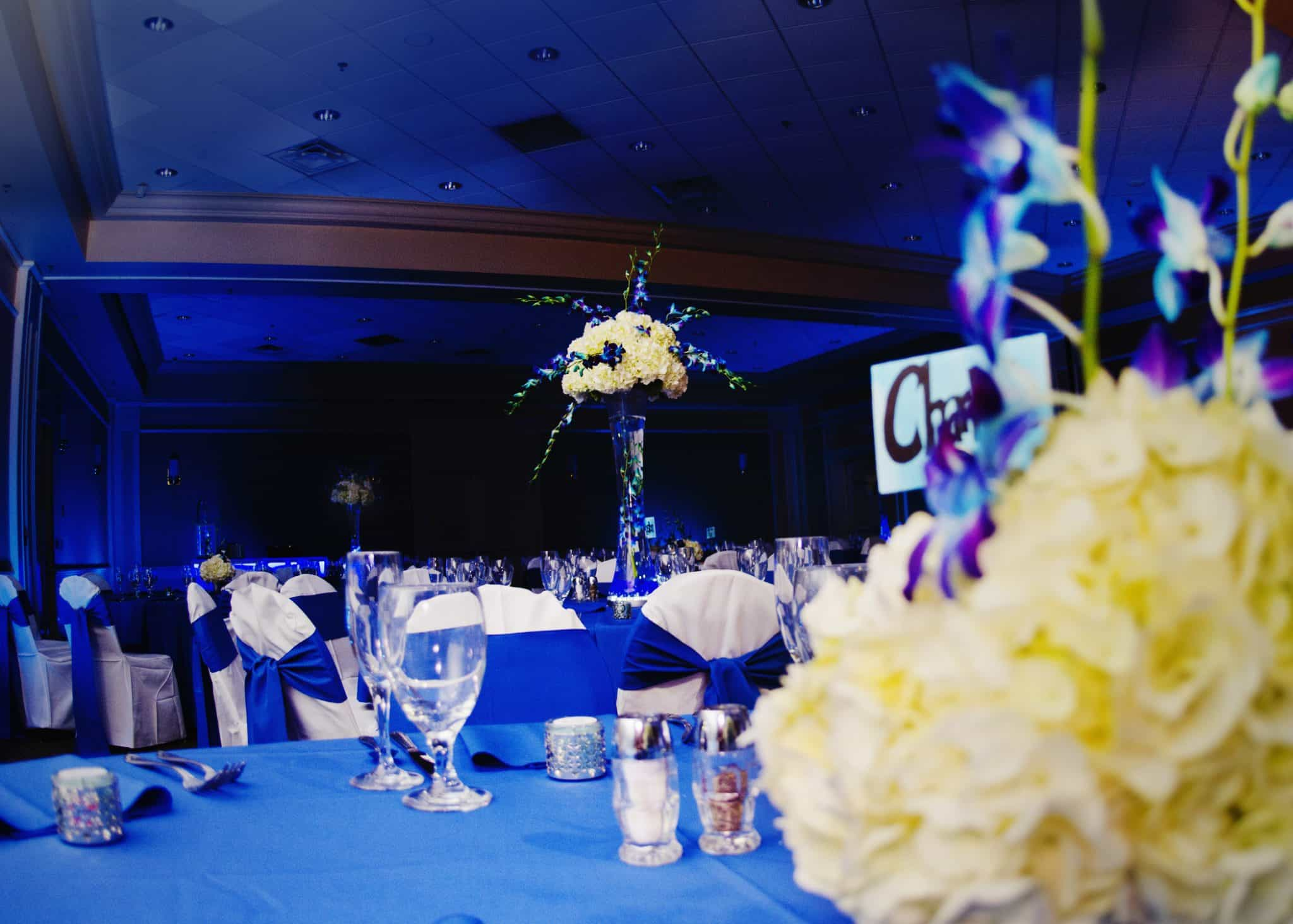 leu gardens orlando fl sapphire blue wedding uplighting