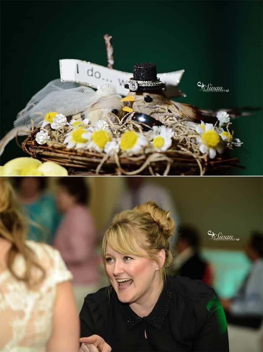 Orlando Wedding DJ - Aqua Uplighting & Bubbles at Leu Gardens