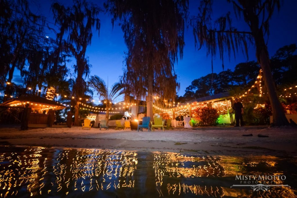Paradise cove wedding venue. Wedding on the water. Market lighting, Outdoor wedding venue.