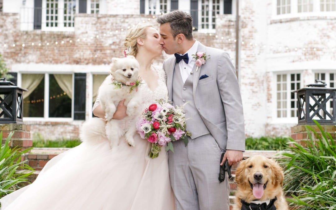 PeachTree House Orlando Wedding – 2 Dogs & Second Line Parade