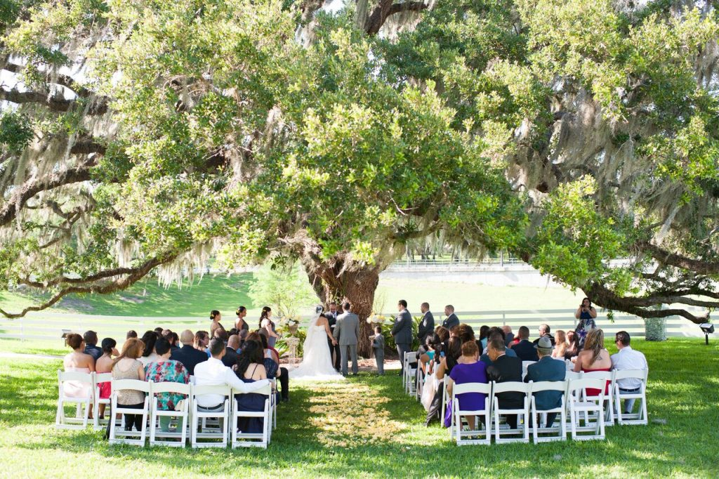 couple getting married under an oak tree