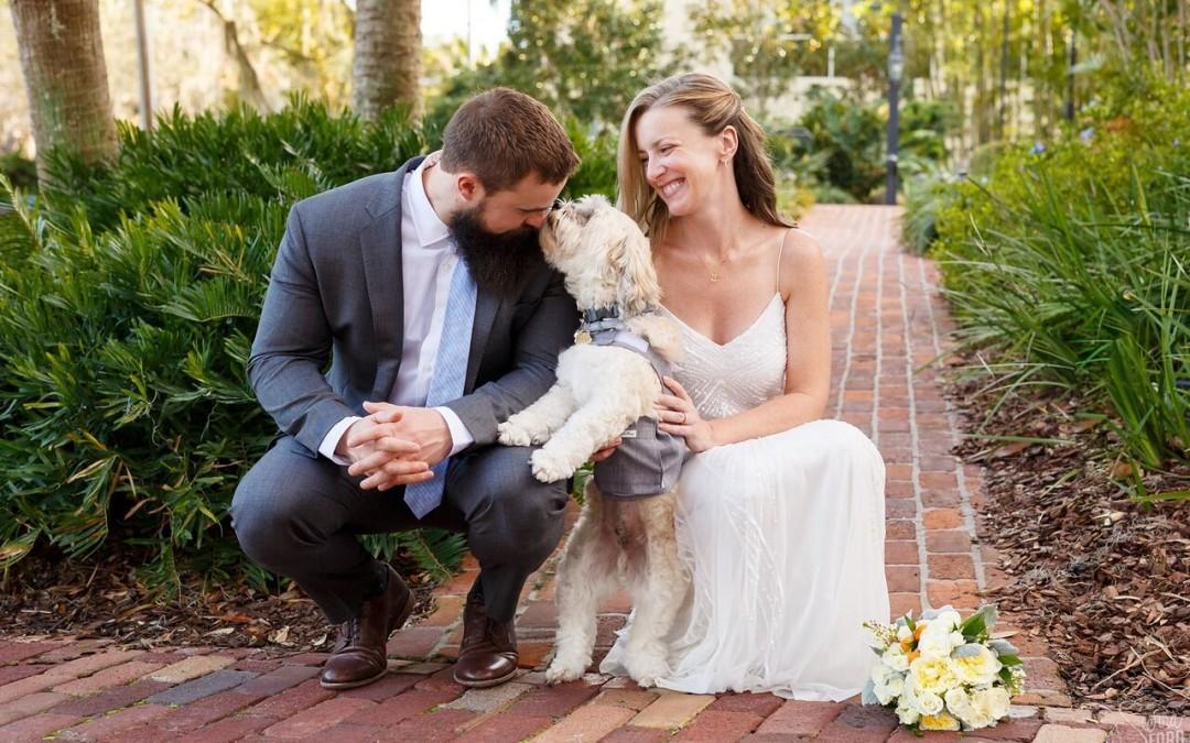 Casa Feliz Wedding with Dog – Wedding DJ Entertainment