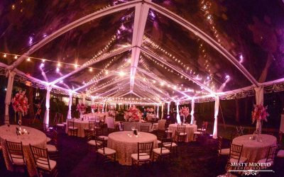 Wedding DJ Fun – Pink Uplighting at Cypress Grove