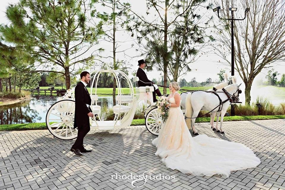 bride and groom next to horse drawn pumpkin carriage